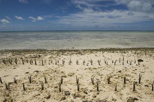 Island Nation of Kiribati Affected by Climate Change. © UN photo/Eskinder Debebe
